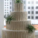 Ivory textured air plant succulents wedding cake